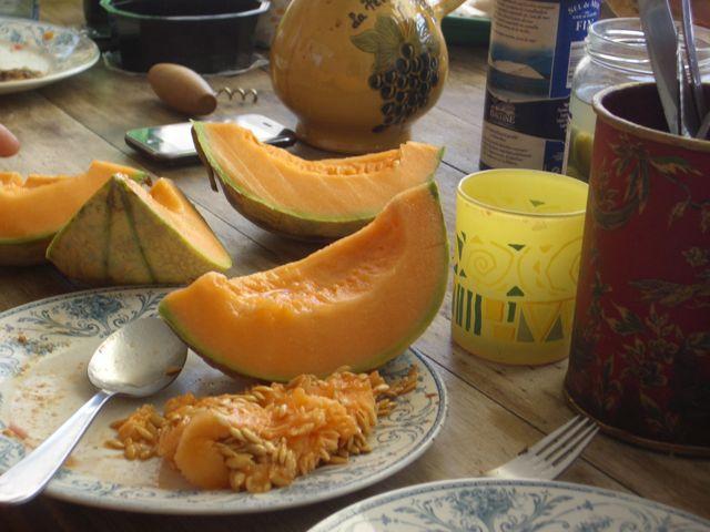 melonslice